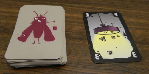 Playing A Card in Cheating Moth