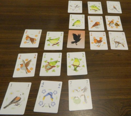 Crow Card in Songbirds