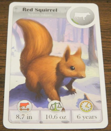 First Card in Cardline Animals