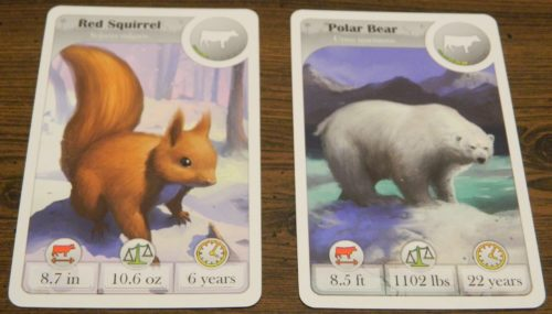 Second Card in Cardline Animals
