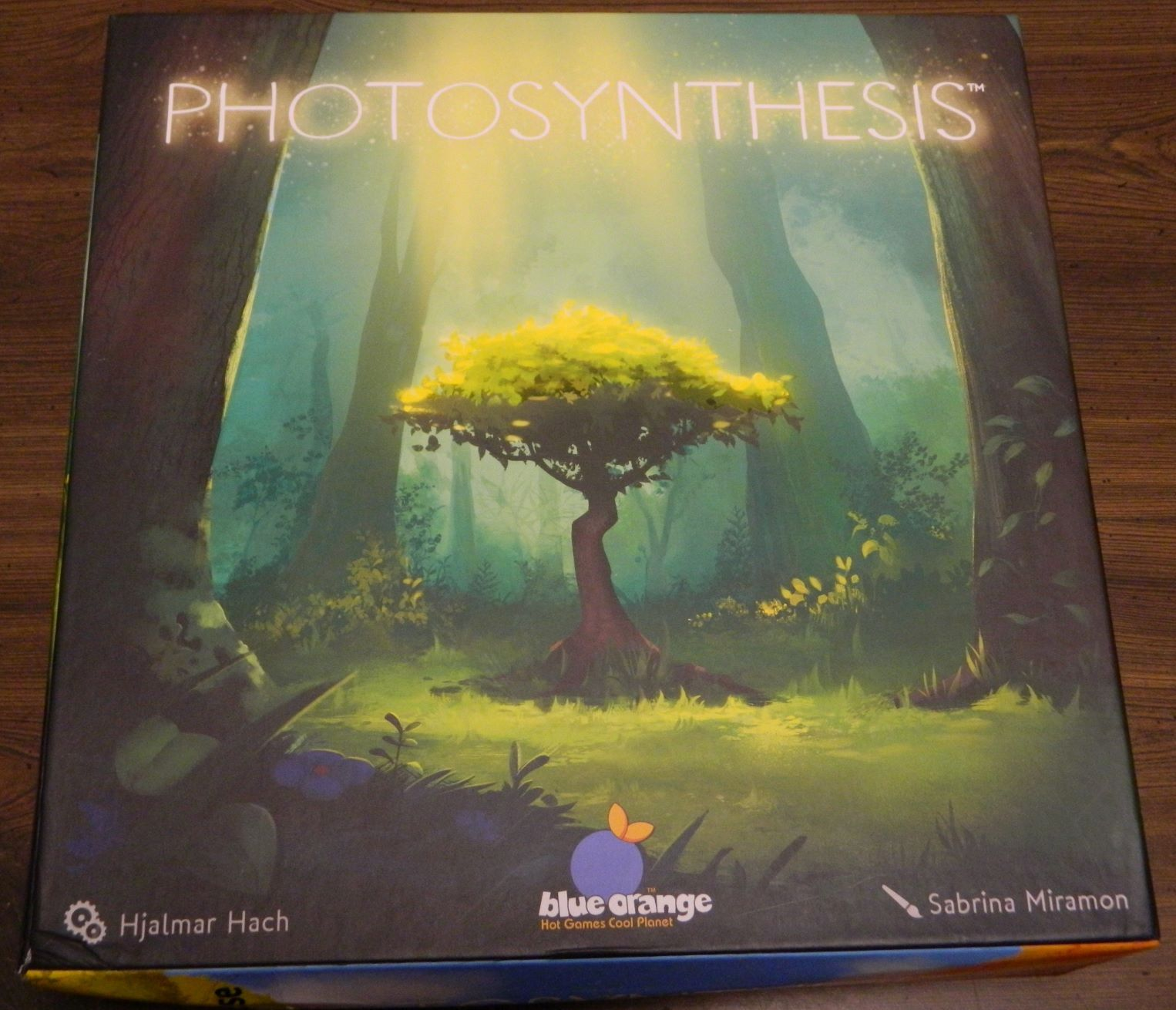 Box for Photosynthesis