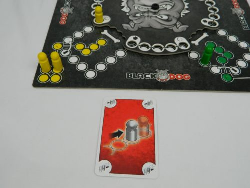 Magnet Example in Black Dog