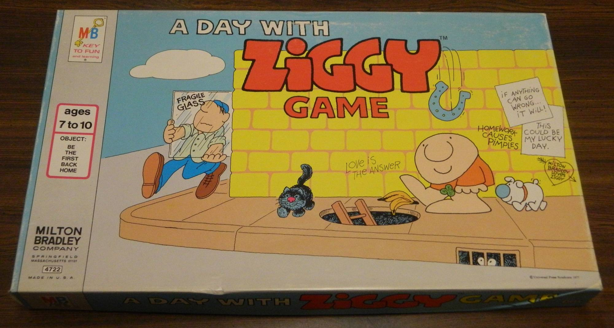 Box for A Day with Ziggy Game