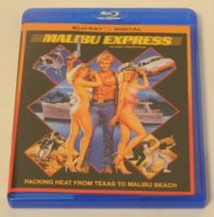 154454|57 |https://www.geekyhobbies.com/wp-content/uploads/2019/04/Malibu-Express-Blu-ray-197x200.jpg