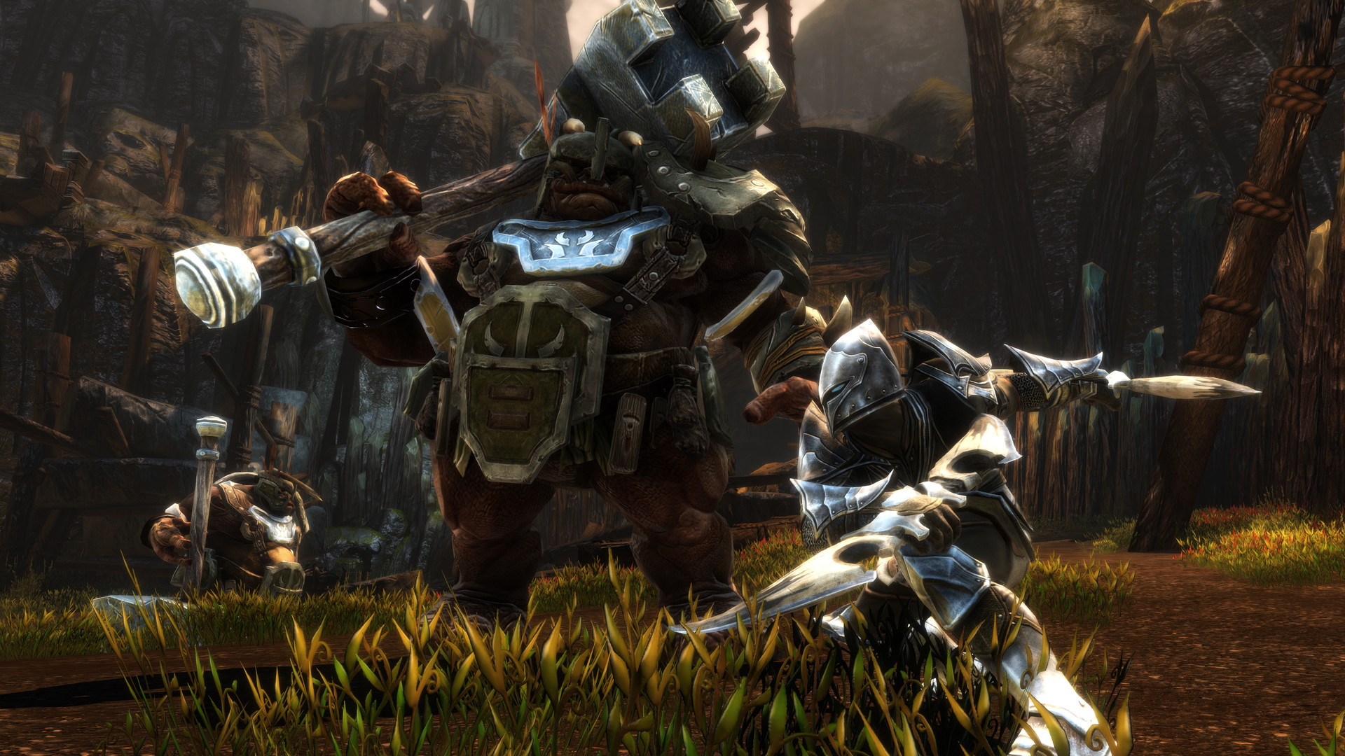 Kingdoms of Amalur: Re-Reckoning Screenshot