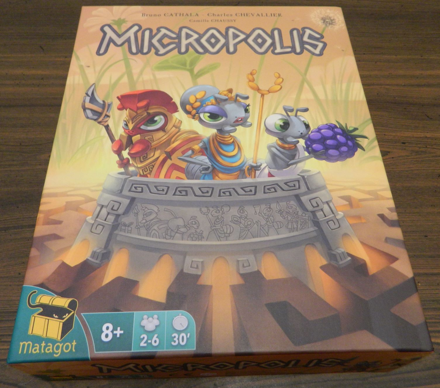 Box for Micropolis